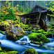 Nature Wallpaper HD by DeveloperKan