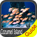 Cozumel Island GPS Navigator by FLYTOMAP INC