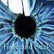 Hide and Seek Game by WelcoTech