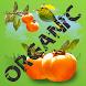 Natural Organic Healing by Wolfgang Schmuck