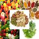 Healthy Nutrition Foods by DeniHAWK