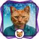 Cat Head Photo Booth by Tony Studio Apps