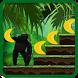Scimmia della giungla lol 2