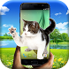 Cat on Screen Magic Touch– Walking Cat Scary Prank by Apps n Tapps