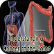 Understanding Cancer of Colon by Revolxa Inc