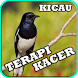 Kicau Terapi Kacer Mp3 by iky94 studio