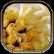 Rose Flower CallerID by Apps Hunt