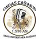 Radio Ondas Cañaris 1530 AM by Nobex Technologies