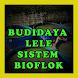 Budidaya Lele Sistem Bioflok by Wabdee Studio