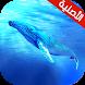 لعبة الحوت الازرق by Hbalinor