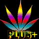 Multicolour Marijuana LWP+