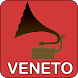 Mercatini Antiquariato Veneto by FinProductions