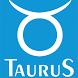 Taurus Kassa systemen by Taurus Kassasystemen