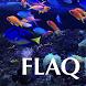 Florida Aquarium Guide by Mike Downs, ks7d