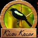 Masteran Kacer Gacor by amily corp