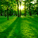 Nature Backgrounds by Applications 4 All