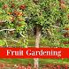 Fruit Garden Ideas by deigo.soft