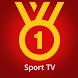 Football TV - Schedule & Goals