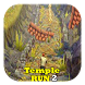 best guide temple run 2 by tchekivara