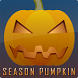 Season Pumpkin by Oleg Bondarenko