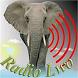 Radio Lwo. by Nobex Partners