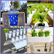 DIY Hydroponic Plantation Ideas by ANB_Studio