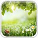 Green Spring Live Wallpaper by Live Wallpaper HQ