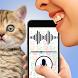 Cat language translator joke by AppAche