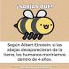 Curiosidades Que Deberías Saber De Ti ¿Sabias Que? by Ley Femenina