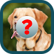 Guess Animals - Easy Spanish by CO2 Apps