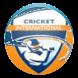 Cricket Funda by Yogendra G