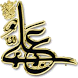 أمير المؤمنين في كتب المخالفين by رافضي وافتخر