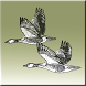 Birding diary Europe by Viktor Lundh