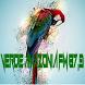 Rádio Verde Amazônia by BRLOGIC