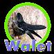 Suara pemanggil walet terbaru by crockerdav