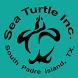 Sea Turtle, Inc. by Digital Media Group