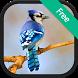 Blue Jay bird sounds by RinradaDev