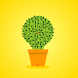 Lucky Cactus by Blimps LLC