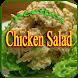 Chicken Salad Recipes by NayarApps