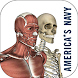 Anatomy Study Guide by Pixo Group, LLC