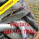 Budidaya ikan lele Dgn Terpal by GoReading