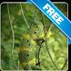 Chameleon Free live wallpaper