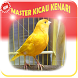 MASTER KICAU KENARI JUARA ! by ajetdev