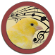 Singer Canary Tutor by MTSWARE
