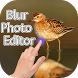 Blur Photo Background Editor by Pearl White Developers