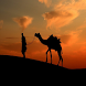 Best Thar Desert Sindh Songs by Zurich Techz