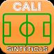CANCHAS SINTÉTICAS DE CALI by EmprenderDigital