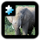 Jigsaw Puzzle: Elephant by CoCoPaPa Soft