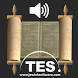 Hebrew Bible Reader by Torah Educational Software, Inc.