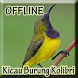 Kicau Burung Kolibri Lengkap by Big Emo Labs